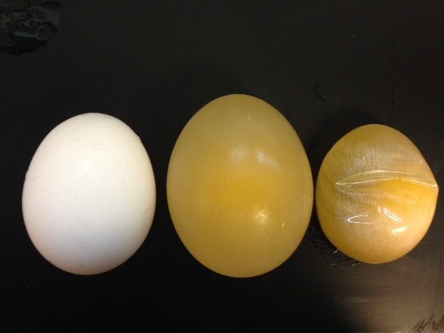 egg osmosis la1 Epa542-b-97-qq6 may 1998 innovative site remediation technology design & application liquid extraction technologies prep ared by the anierican.