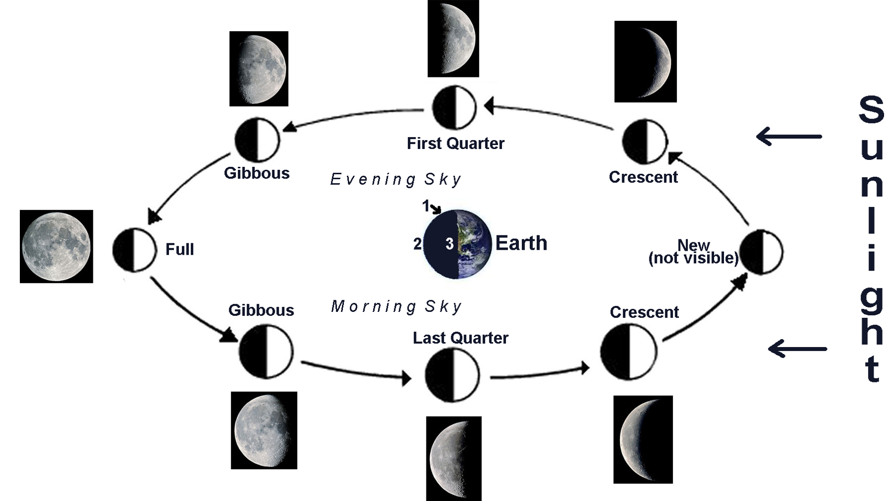 Ms carlsons blog march 2016 moon phases 2 pooptronica Choice Image